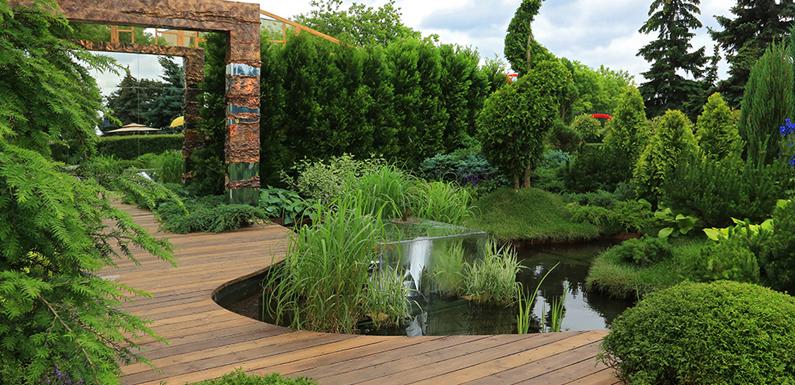 Ландшафтный дизайн. Основы ботанического искусства